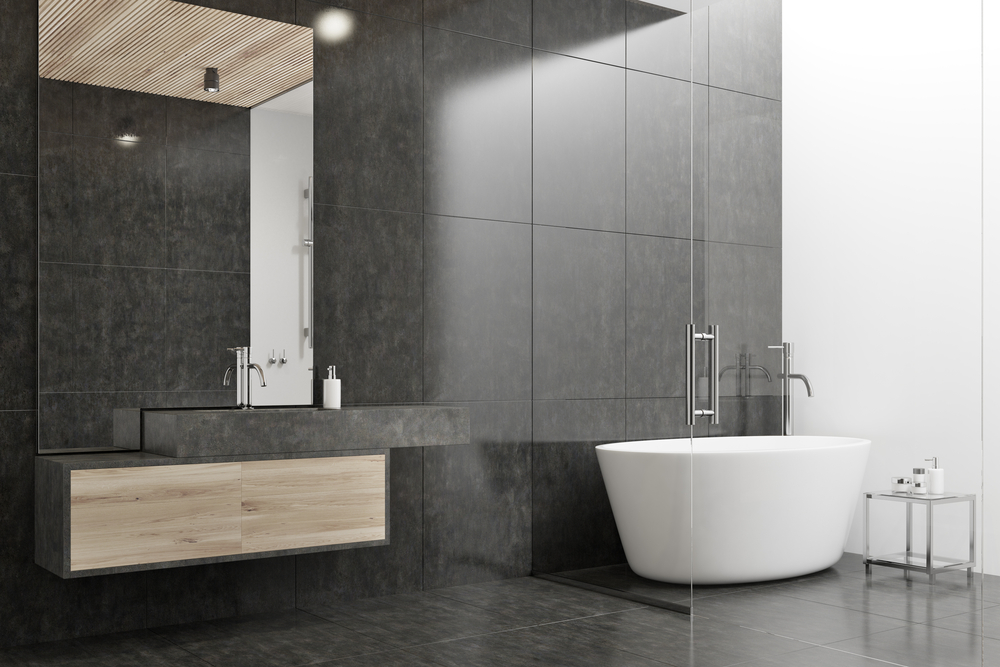 black and white open bathroom